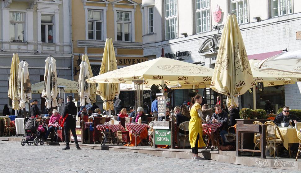 Tips till ett dagsbesök i Tallinn